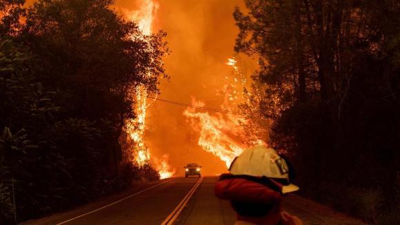 wildfire noah